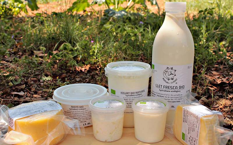 lactics-llet-ecologica