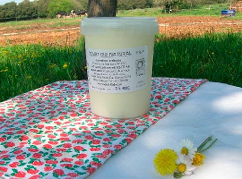 Iogurt ecològic bio natural